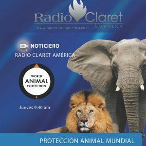 Proteccion Animal muNDIAL Noticias Radio Claret
